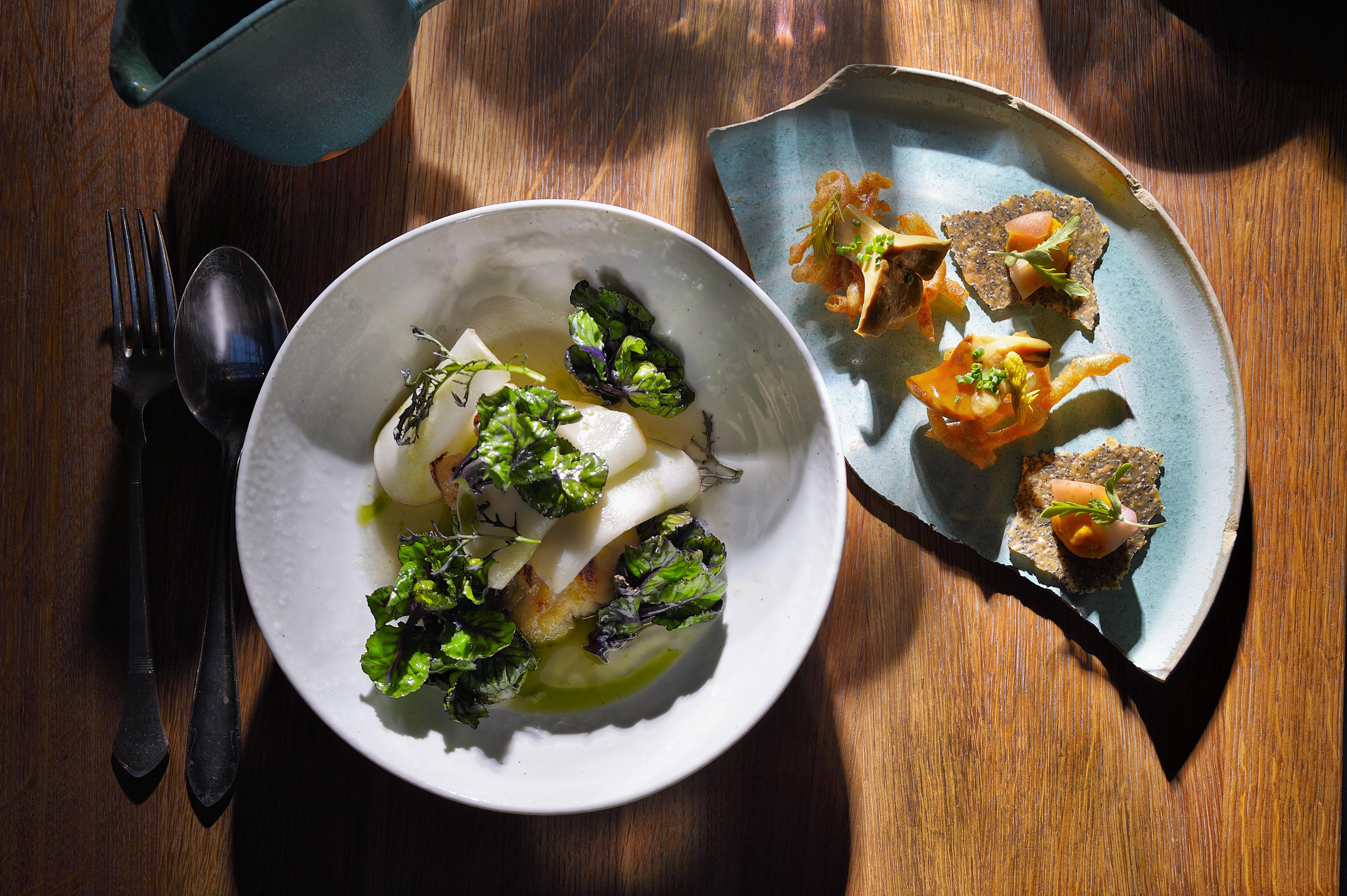 Grilovaný sumec, kapusta, celer, uzený vývar